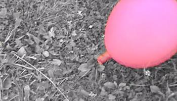 sgpro_pr_video15